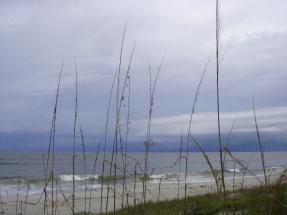 through the sea oats