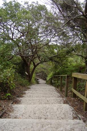path to lagoon