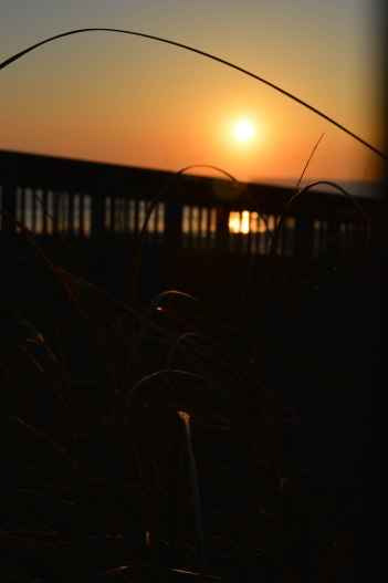 wabasso sunrise march 8 2013 (10)